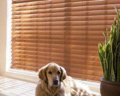 Parkland Reflections Wood Blinds for Homes in Omaha, Elkhorn, Lincoln & Papillion, Nebraska (NE)