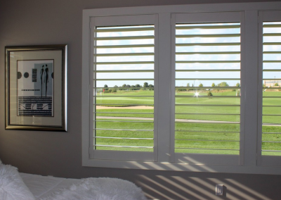 Eagle View 3 - Hunter Douglas NewStyle® Plantation Shutters with hidden tilt, customized divider option