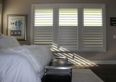 Eagle View 5 - Hunter Douglas NewStyle® Plantation Shutters with hidden tilt, customized divider option