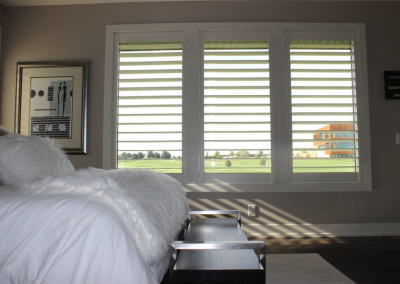 Eagle View 6 - Hunter Douglas NewStyle® Plantation Shutters with hidden tilt, customized divider option