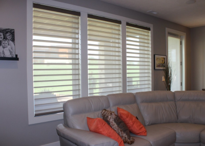 "Eagle View 8 - Hunter Douglas Alustra® PowerView® 4"" Silhouettes"